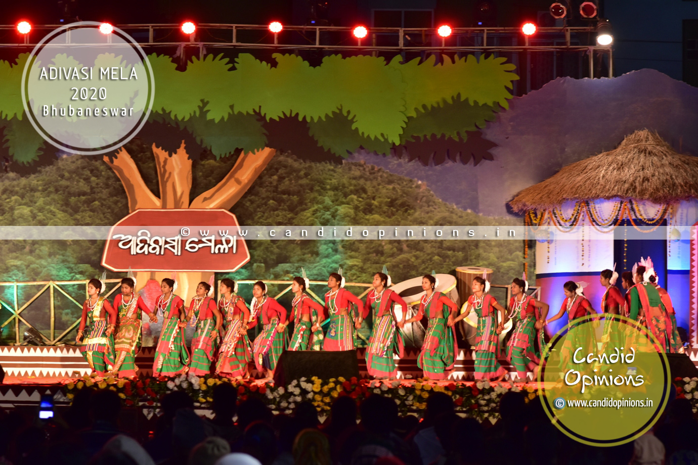 Adivashi Mela 2020, Bhubaneswar