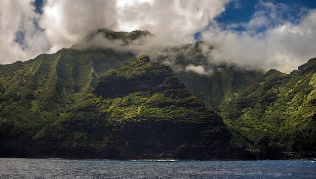 Landscape of coast, Forest and Hawaii Mountain