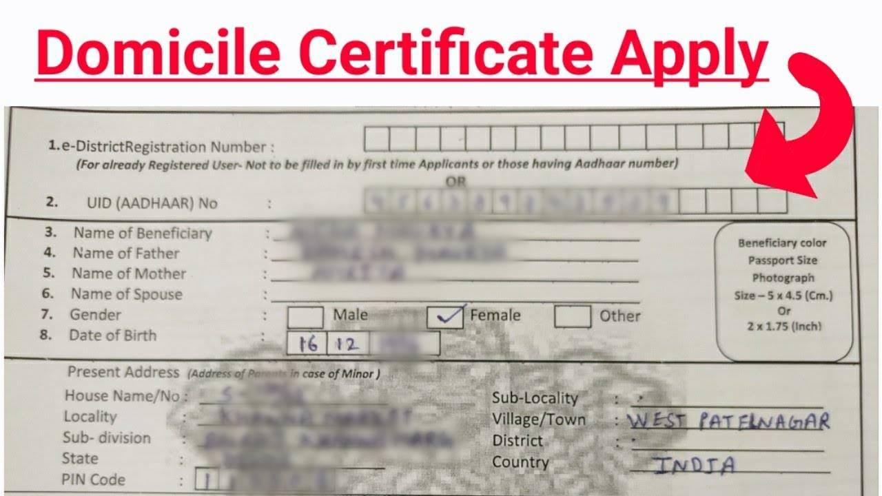 How to Get Domicile Certificate in Pakistan? - how to make domicile certificate online