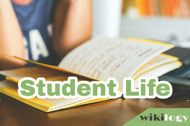Student Life Composition Essay