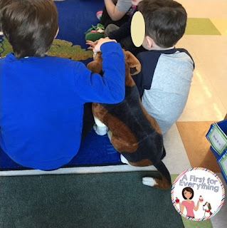 How to a classroom pet to help student self-regulate.