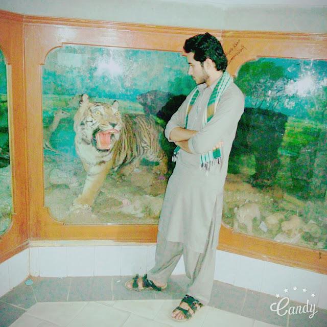 mehar asif romeo photos pictures