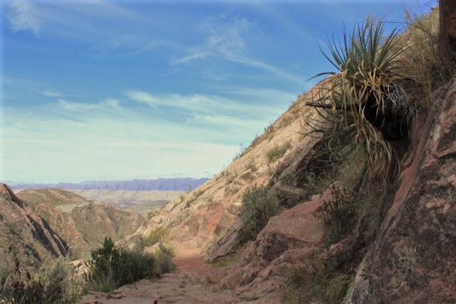 Strada Inca - Cordillera de los Frailes - Bolivia