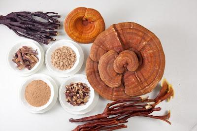 Nấm linh chi có tác dụng tốt cho sức khỏe