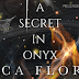 Release Blitz - A Secret in Onyx by Jessica Florence