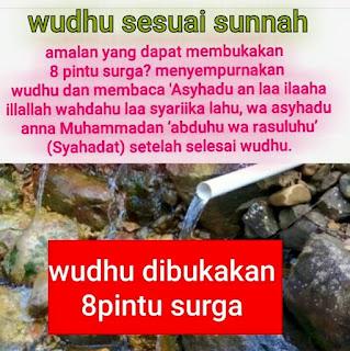 Panduan Wudhu sesuai Sunnah