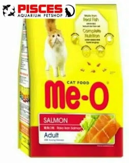 10 Rekomendasi Makanan Kucing yang Bagus Untuk Memenuhi Kebutuhan Nutrisi