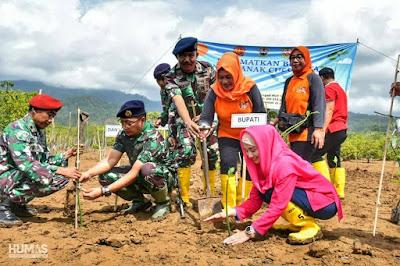 Novita Hardini Ikut Menanam Mangrove dalam Peringatan HUT ke-74 TNI