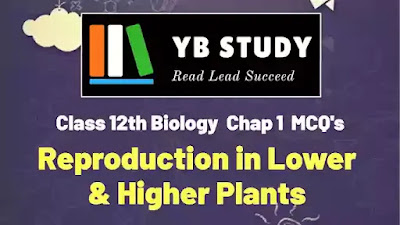 Reproduction in lower and higher plants MCQ