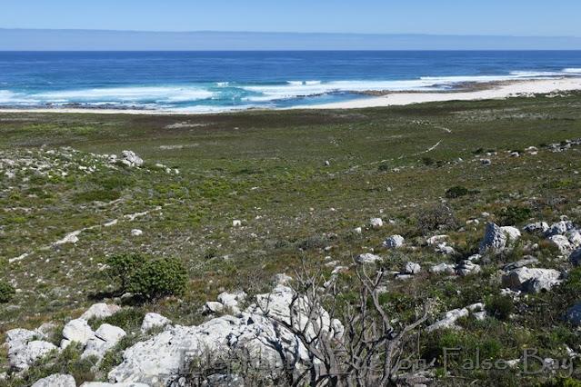 Winding path down to Shipwreck Trail