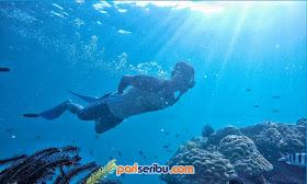 Paket One Day Trip Wisata Pulau Pari