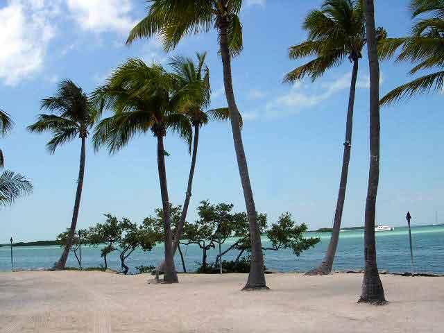 Quần đảo san hô ở florida