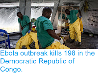 https://sciencythoughts.blogspot.com/2018/11/ebola-outbreak-kills-198-in-democratic.html