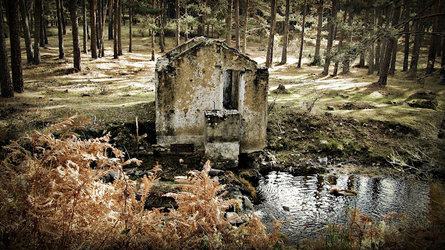 Garganta Río Moros - Ruinas - Alfonsoyamigos