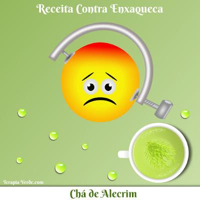 Receita Contra Enxaqueca: Chá de Alecrim