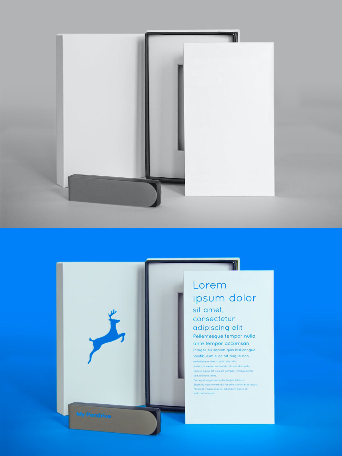 Standing Product and Pendrive psd Mock ups Free