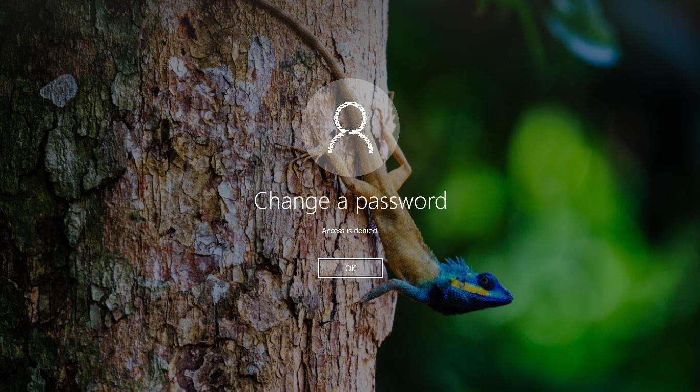 Hướng dẫn thiết lập nhanh user cannot change password mà không phải tạo tài khoản mới