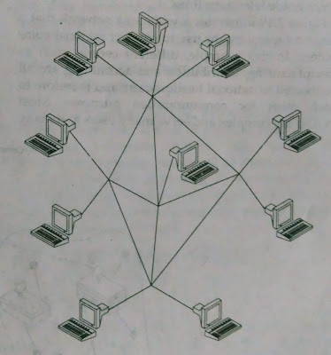 A graph or mesh topology