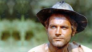 Terence Hill Net Worth, Income, Salary, Earnings, Biography, How much money make?