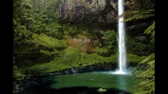 सपने में हरा पानी देखने की विभिन्न अवस्थाएं  सपने में हर पानी देखने का क्या मतलब होता है आइए जानतें हैं यदि आप सपने में हरा पानी देखते हैं तो इसका क्या मतलब होता है