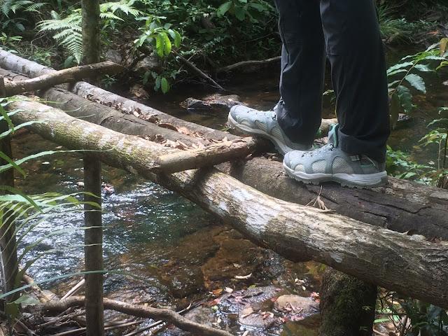 Salomon Techamphibian 3 Water Shoe review
