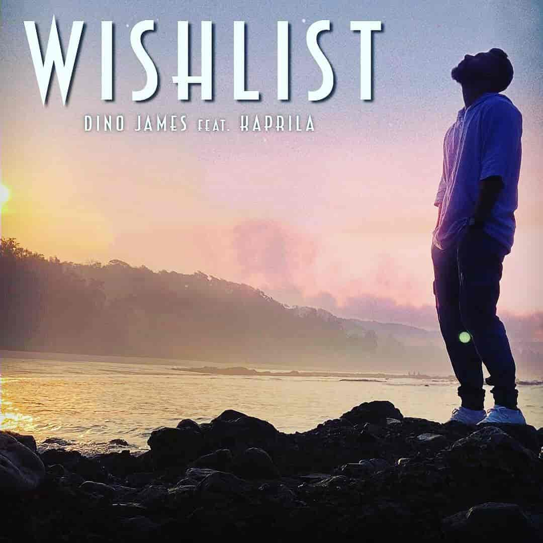 Wishlist Hindi Song Image By Dino James