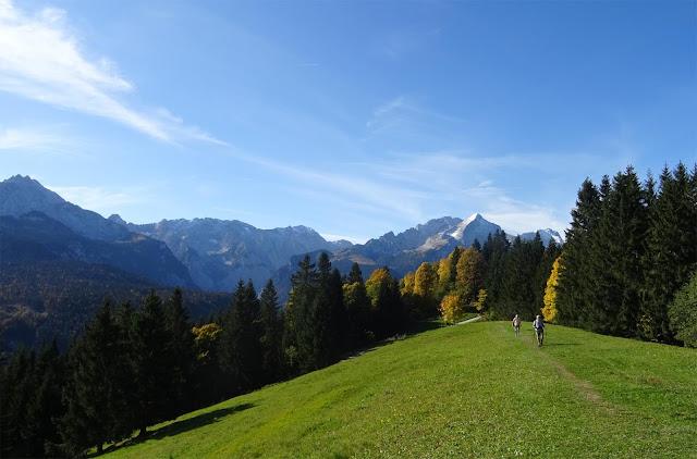 Grüne Lichtung mit Wettersteingebirge, Laubbäumen und Bergwiesen