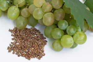 Vertus des pépins de raisin