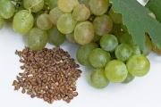 Vertus des pépins de raisin, grenade, pamplemousse, courge