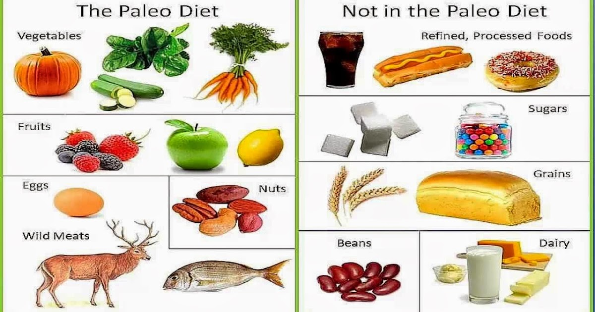who invented the paleo diet