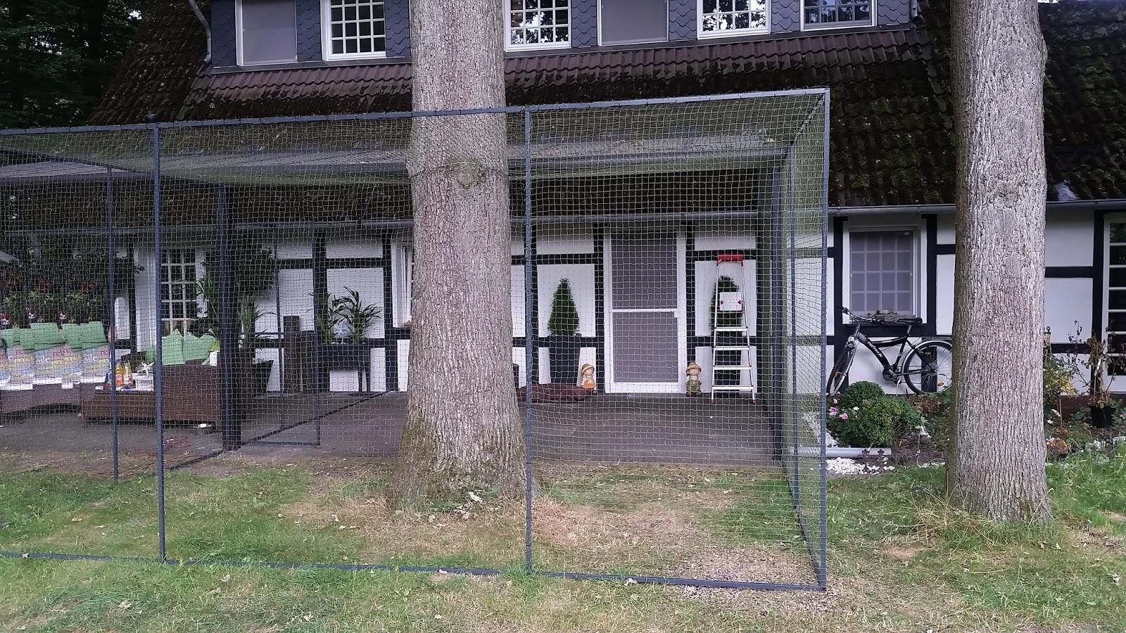katzennetz nrw die adresse f r ein katzennetz terrasse als katzengehege. Black Bedroom Furniture Sets. Home Design Ideas