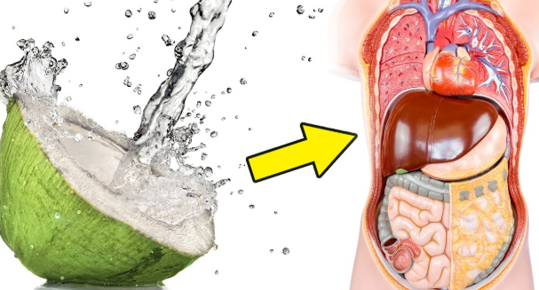 #This Is What Will Happen #When You Drink Coconut Water For A Week#Health