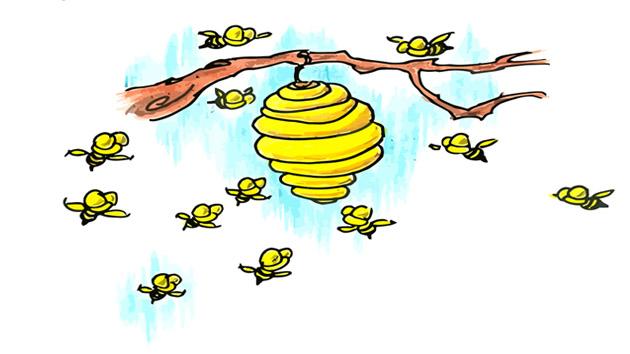 قصة خلية النحل