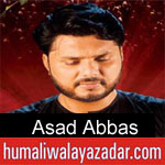 https://www.humaliwalyazadar.com/2018/09/asad-abbas-nohay-2019_29.html
