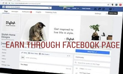 WORK AND EARN THROUGH YOUR FACEBOOK PAGE