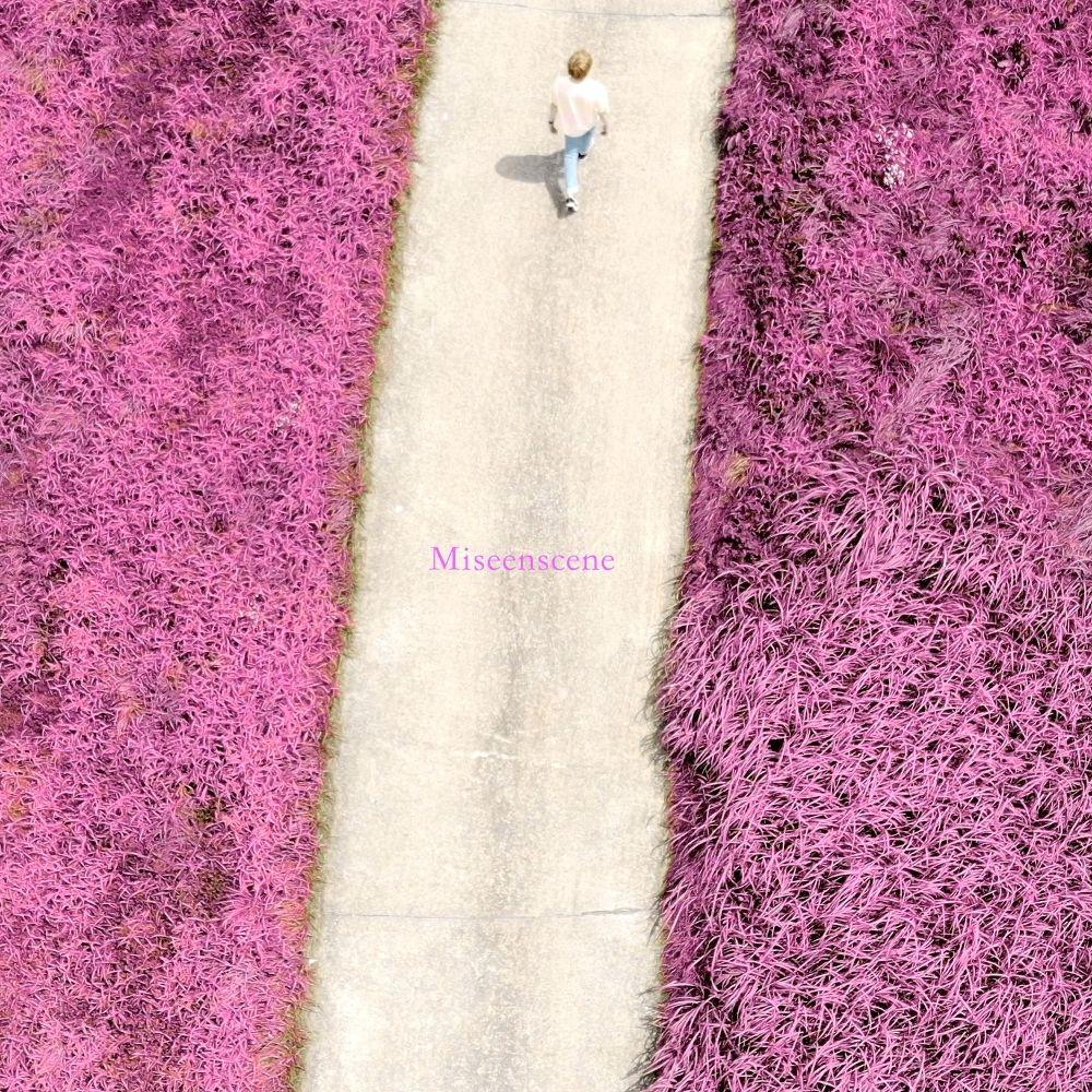 ANTS, SEOGY – 미장센 – Single