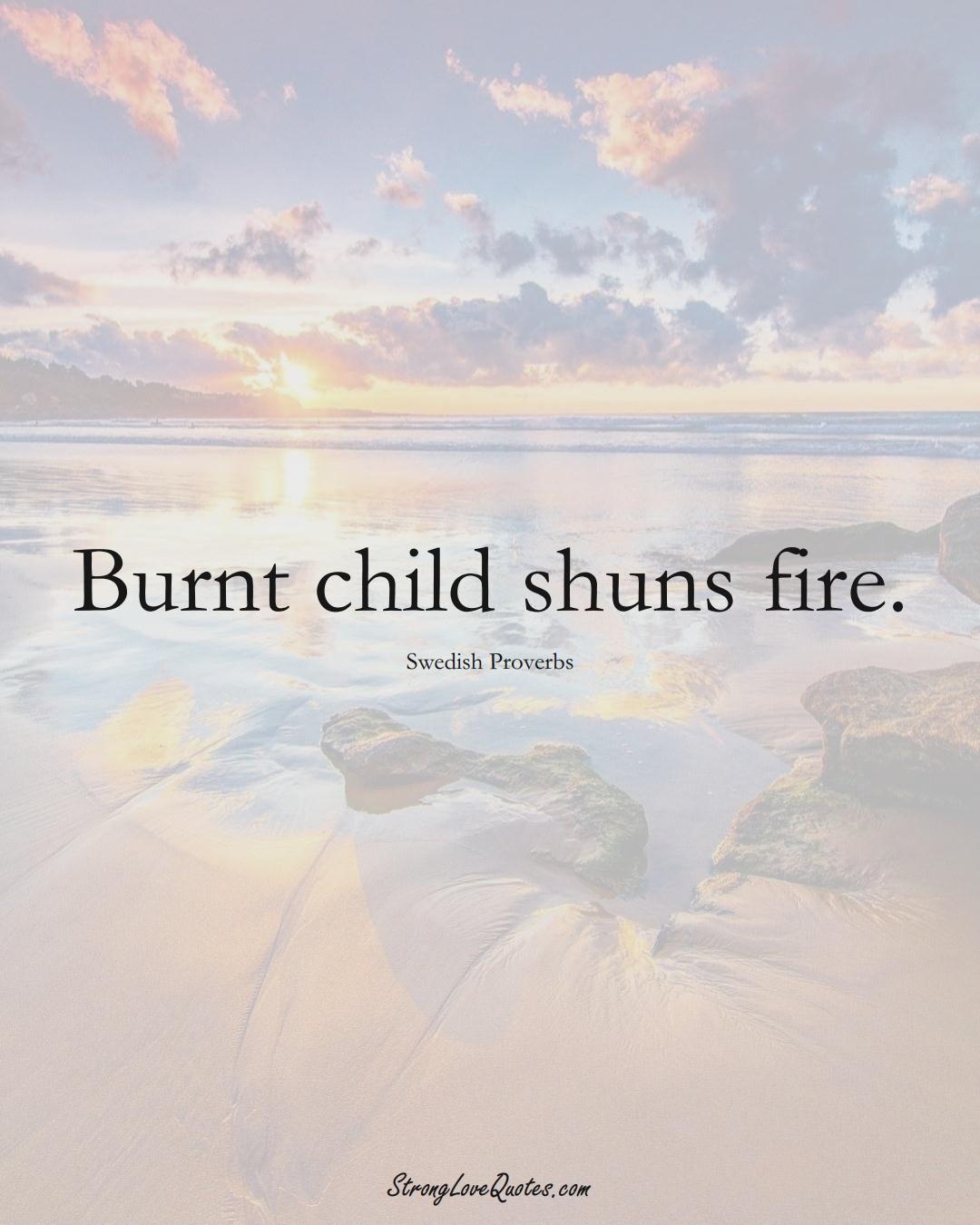 Burnt child shuns fire. (Swedish Sayings);  #EuropeanSayings