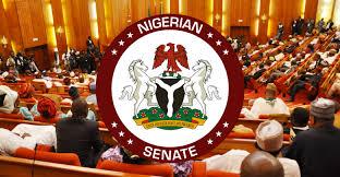 Nigerian senator