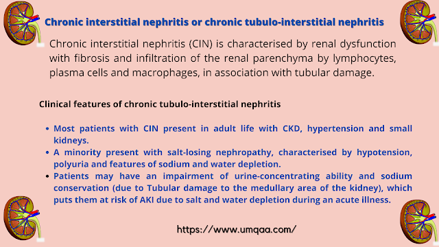 What are the causes of chronic interstitial nephritis?