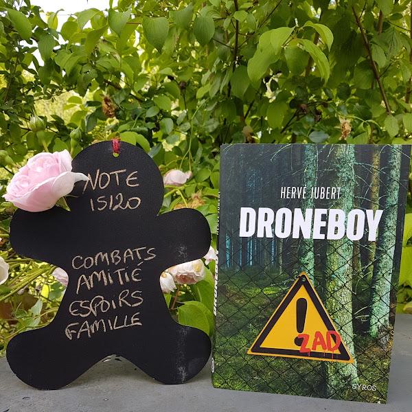 Droneboy de Hervé Jubert