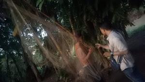 Momen Ikan kemudik di Lampung Utara