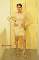 Actress Pooja Roshan Stills in Golden Short Dress at Box Movie Audio Launch  0011.JPG