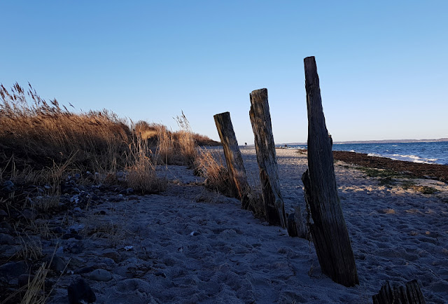 Küsten-Spaziergänge rund um Kiel, Teil 5: Jellenbek - Strand - Krusendorf - Jellenbek. Die Tour führt an Steilküste und Strand entlang.
