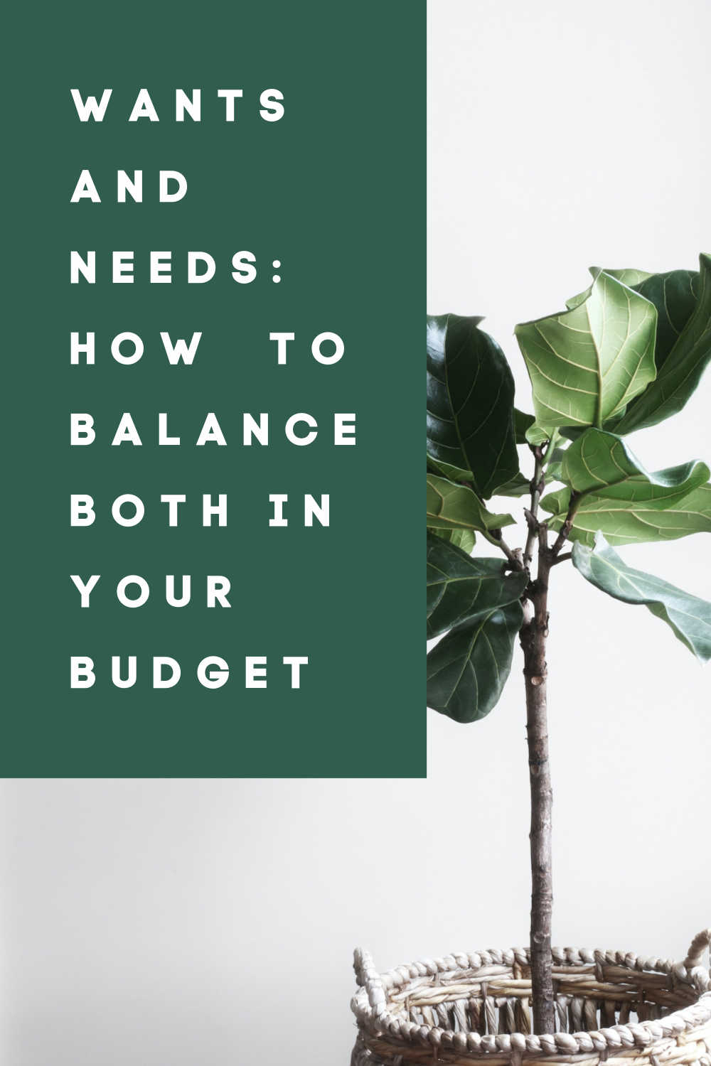 wants and needs how to balance both in your budget