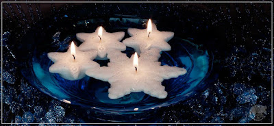 http://www.candlefactorystore.com/holiday-floating-candles-1/