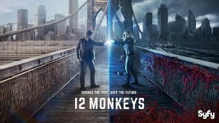 Download 12 Monkeys Season 1-2 Complete 480p  All Episodes