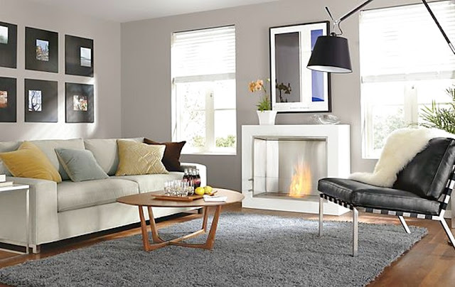 Shaggy Rugs For Living Room Recommendation You Must Own