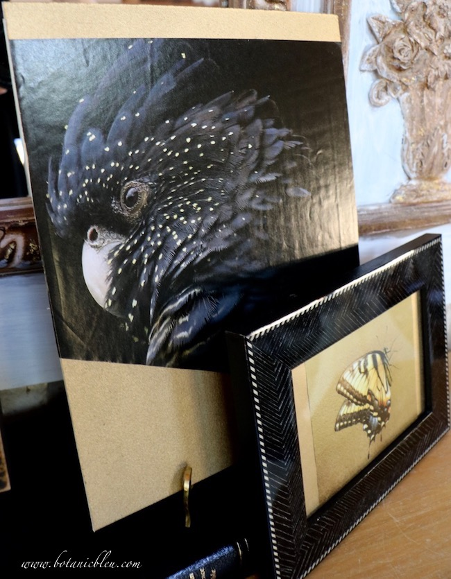 Elegant halloween black and gold mantel exotic black bird with gold flecks