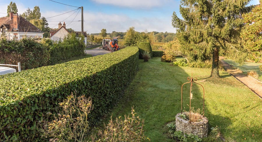 Hedges are done