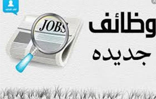 مطلوب محاسبين وبائعين للعمل في شركة كويتية بالإمارات